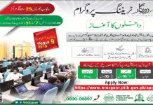 PITB E-Rozgaar Training Program 2019