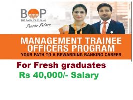 Bank Of Punjab Jobs Management Trainee Officers Program 2019
