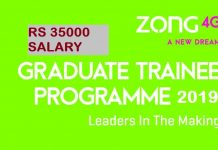 GRADUATE TRAINEE PROGRAM 2019