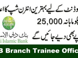 DIB Branch Trainee Officers program