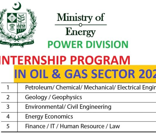 ministry of energy petroleum division